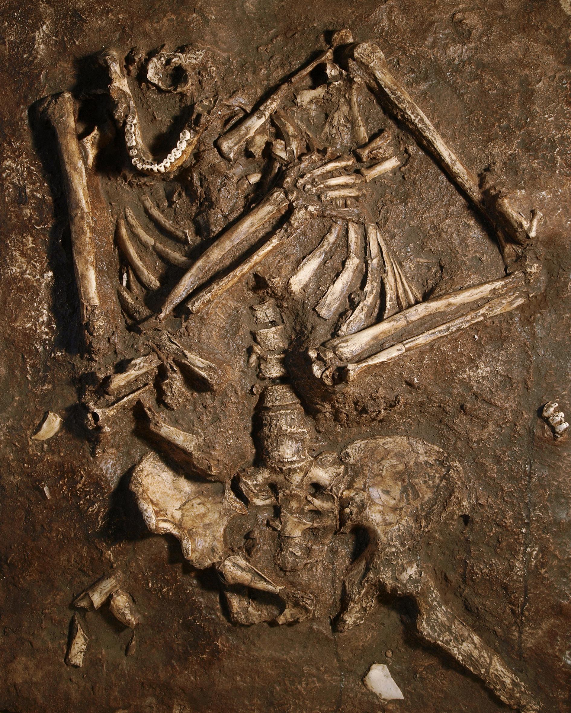 Fotografía de un molde del esqueleto neandertal de Kebara 2 tal y como fue encontrado
