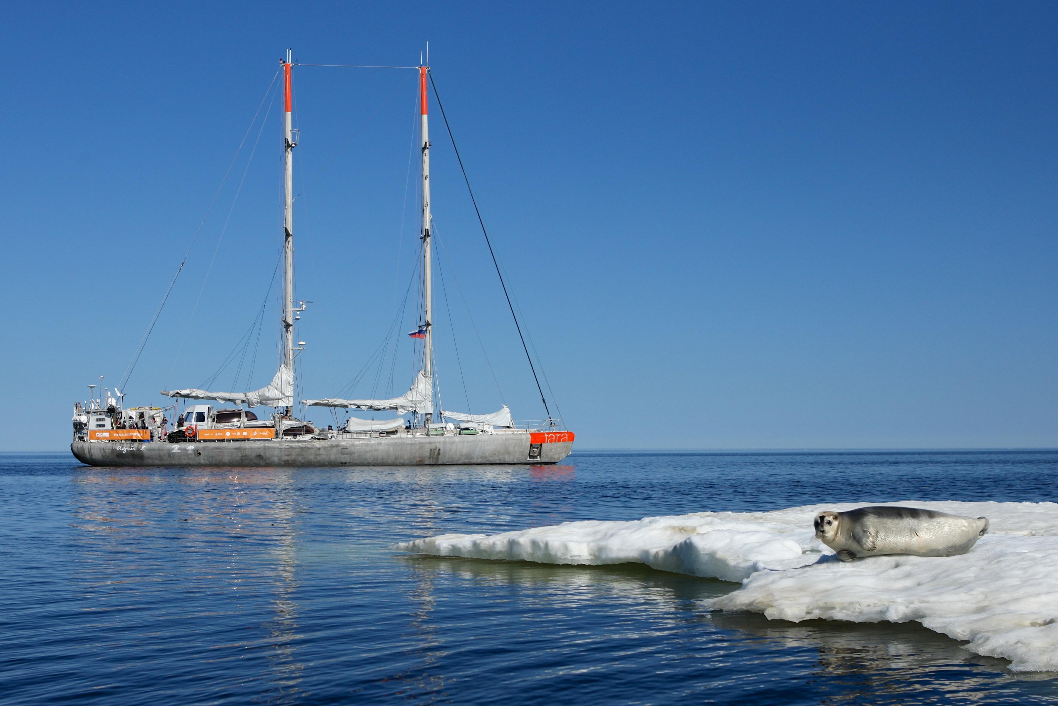 Collection of micro-plastics in the Arctic Ocean