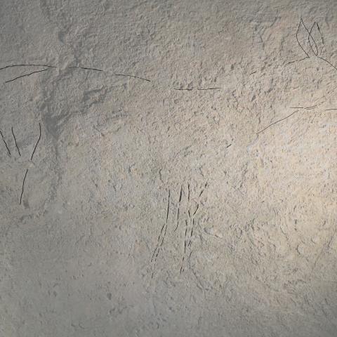 Hallazgo de arte parietal en la cueva de Arbil V (Deba, Gipuzkoa)